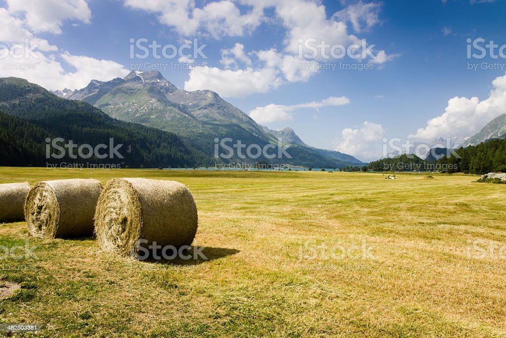 Walking around Sils lake (Switzerland) stock photo