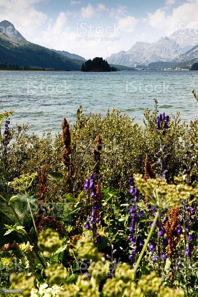 Walking around Sils lake (Switzerland) stock photo