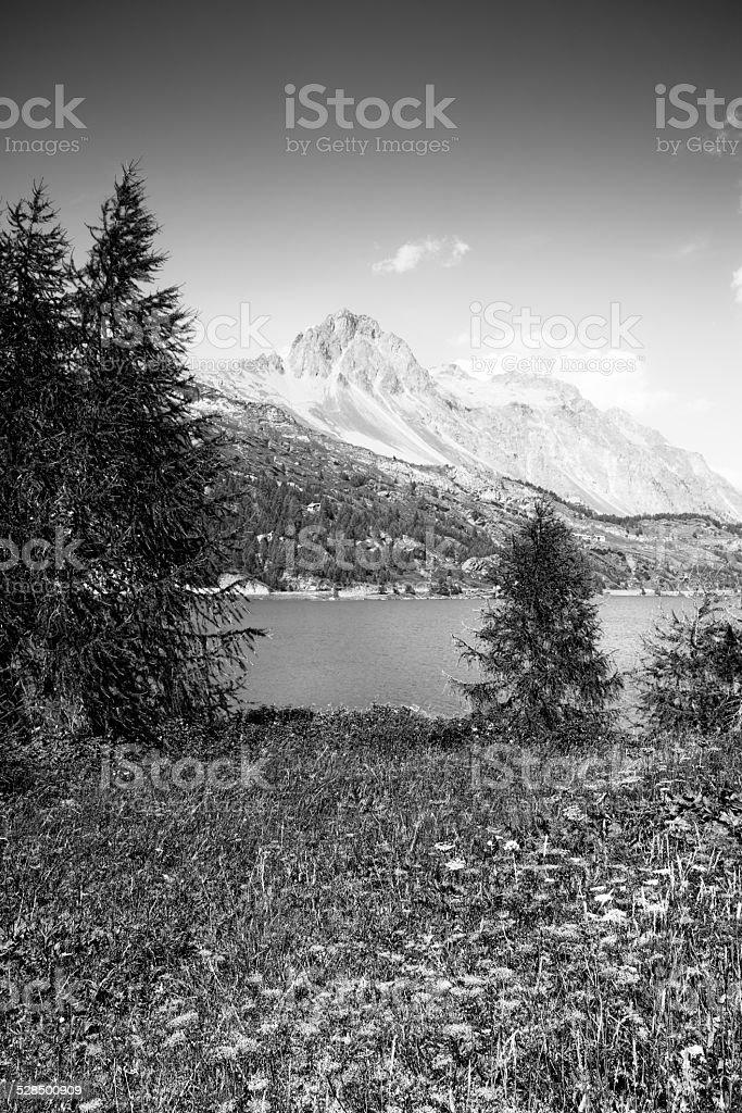 Walking around Sils lake stock photo