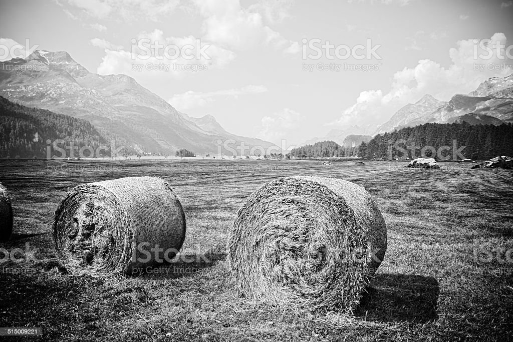 Walking around Sils Lake - Switzerland - Europe stock photo