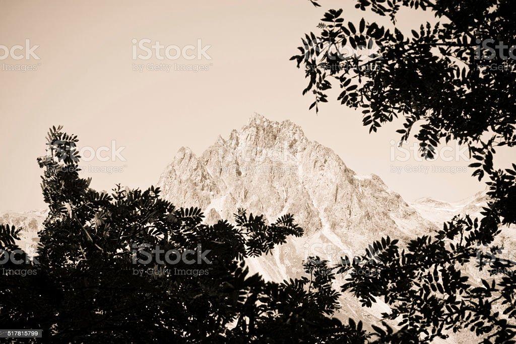 Walking around Sils Lake - Switzerland stock photo