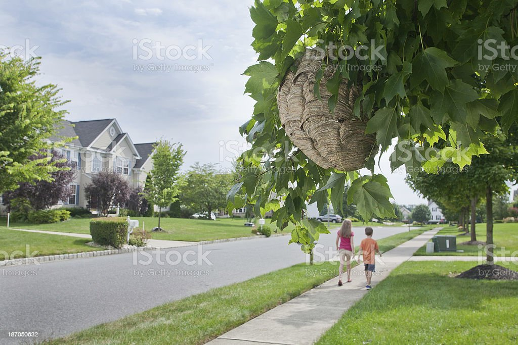 Walking away from Danger royalty-free stock photo