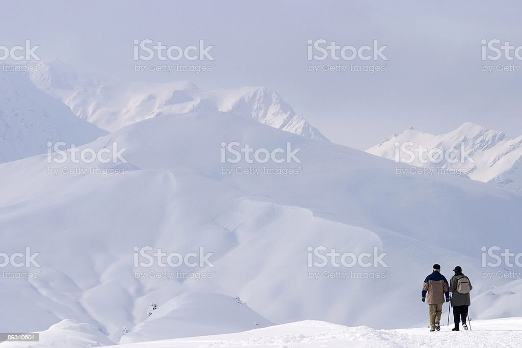 walking couple in the Alps royalty-free stock photo