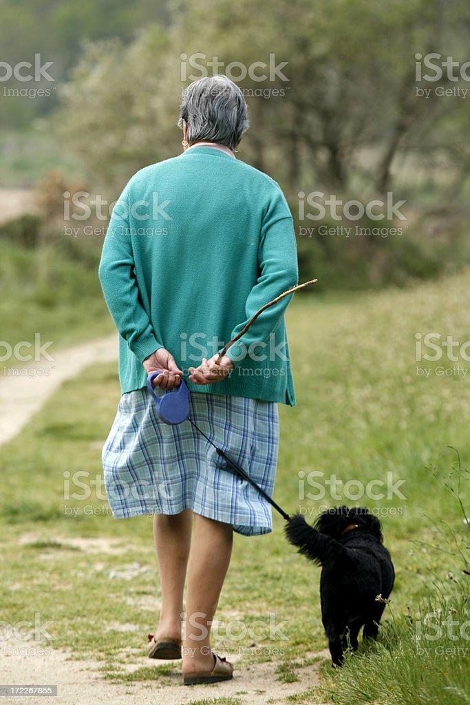 Walking Dog royalty-free stock photo