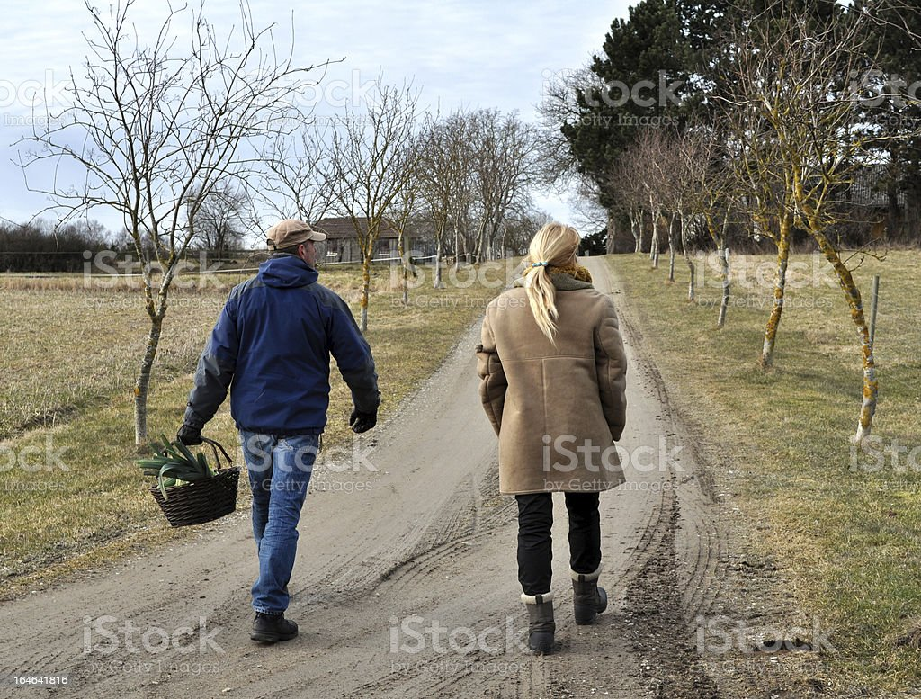 Walking Home royalty-free stock photo