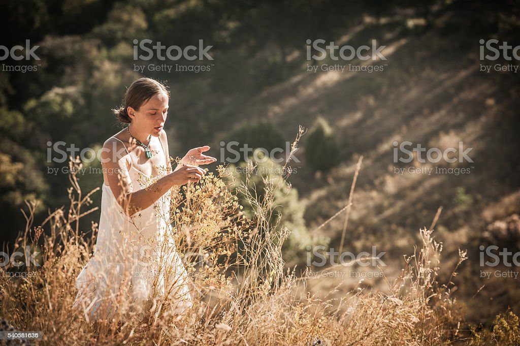 Walking in a Summer Meadow stock photo