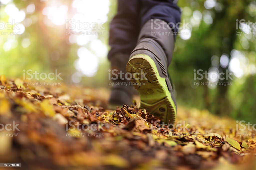 Walking in autumn or winter stock photo