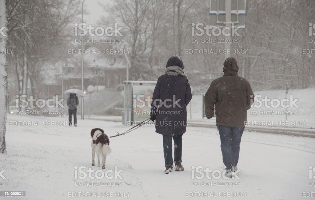 Walking in haevy snowfall stock photo