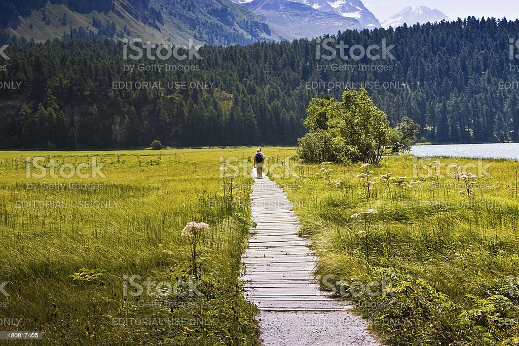 Walking in nature around Lake Sils (Switzerland) stock photo