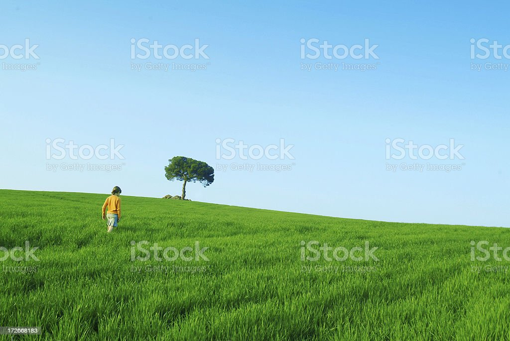 Walking in nature royalty-free stock photo