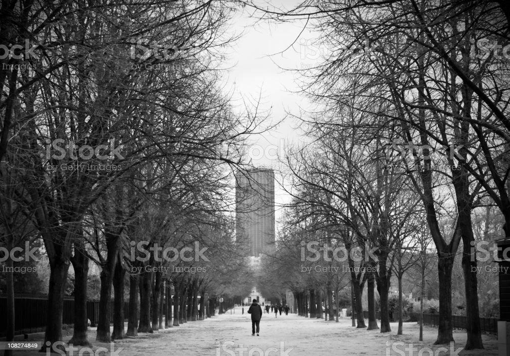 Walking in Paris royalty-free stock photo