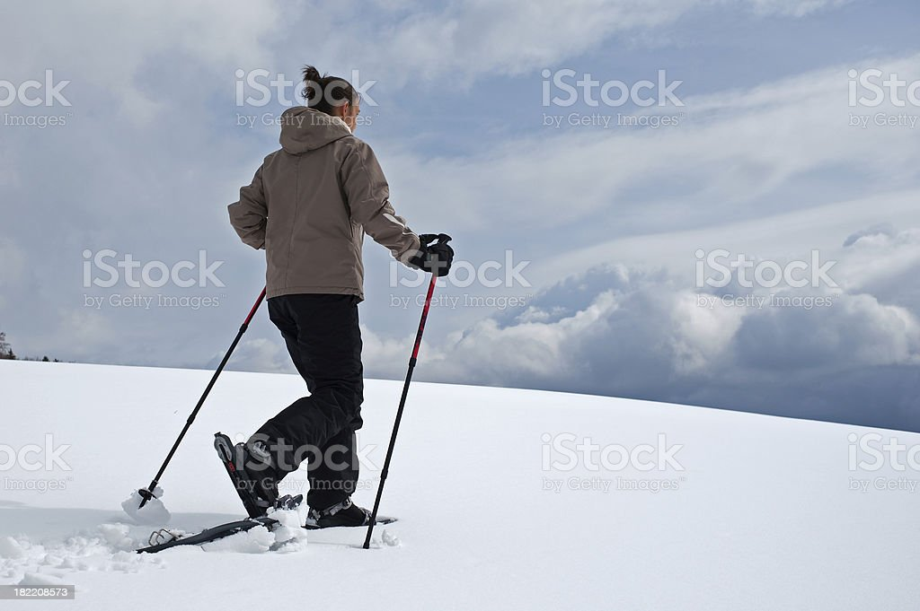 Walking in Snow royalty-free stock photo