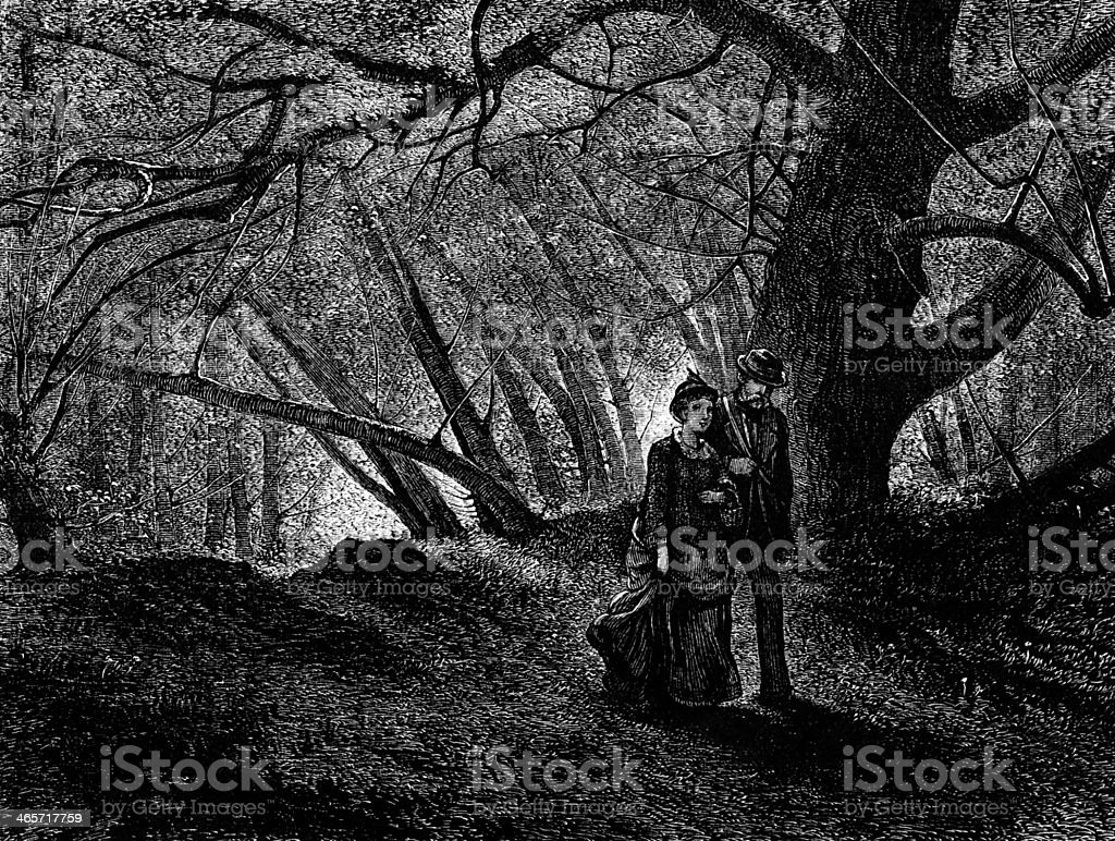 Walking in the dark woods stock photo