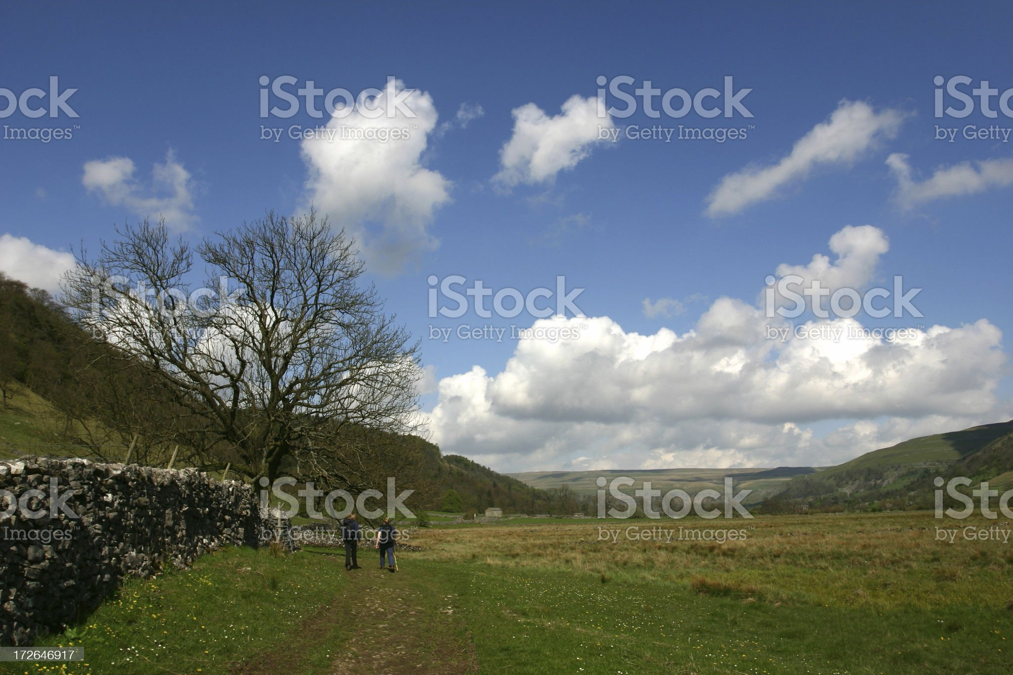 walking in the English countryside royalty-free stock photo