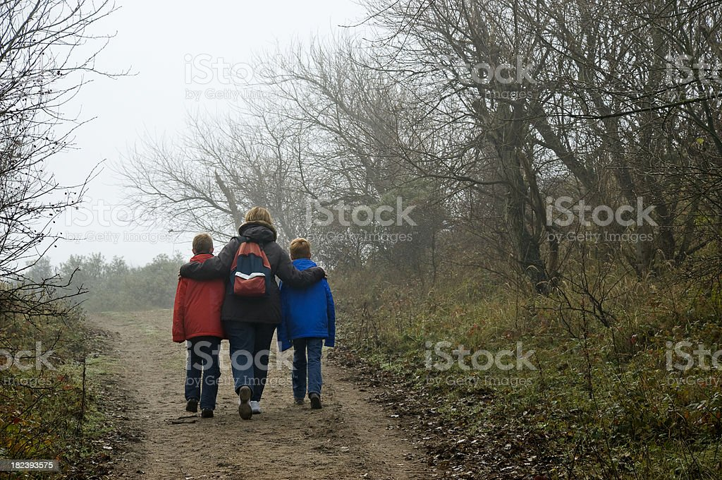 Walking in the Forest royalty-free stock photo
