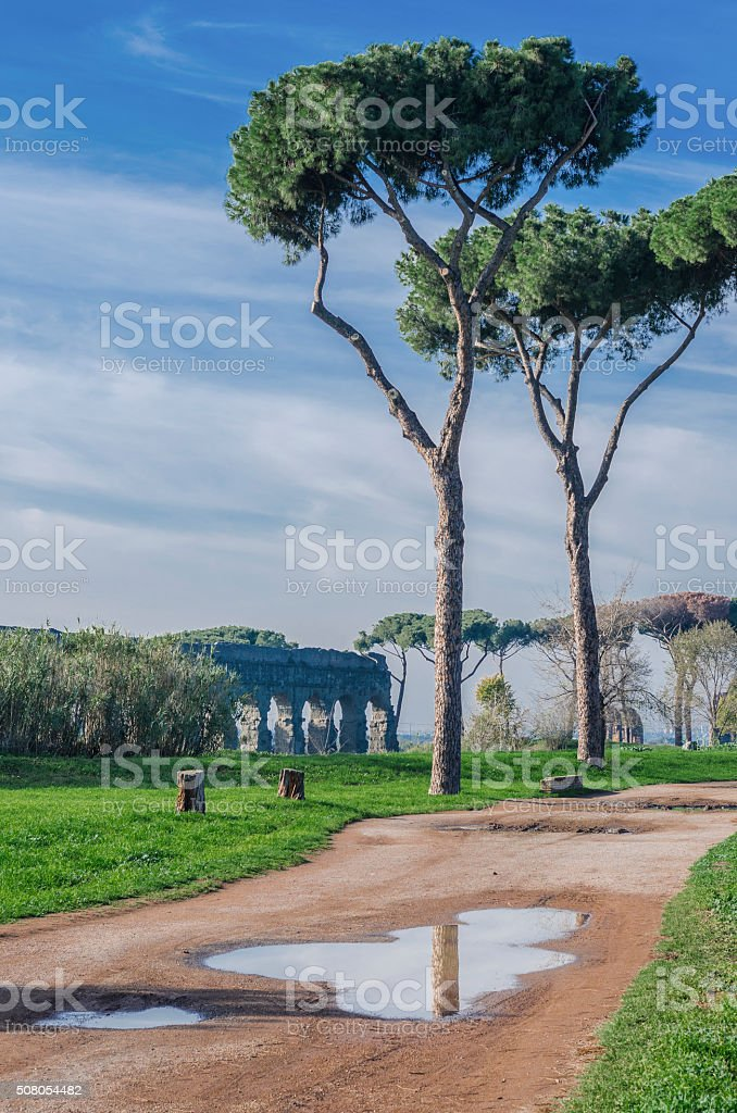 Walking in the Park stock photo
