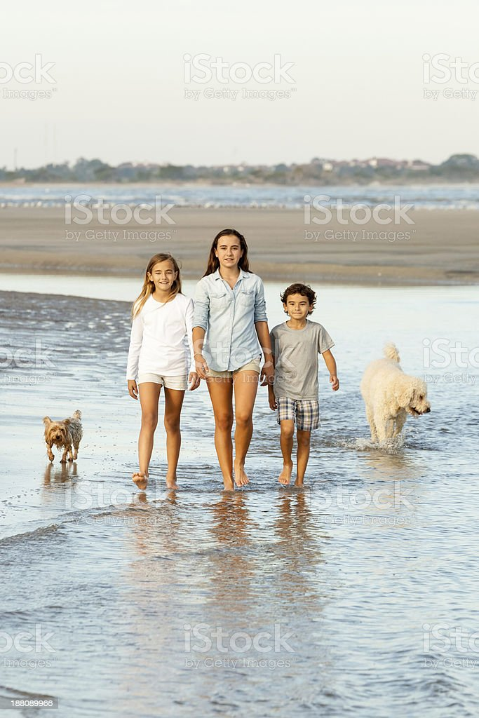Walking in the Surf II royalty-free stock photo
