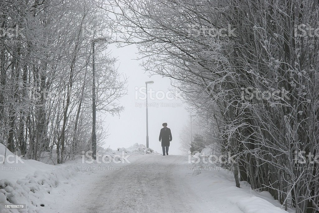 Walking in the winter forest stock photo