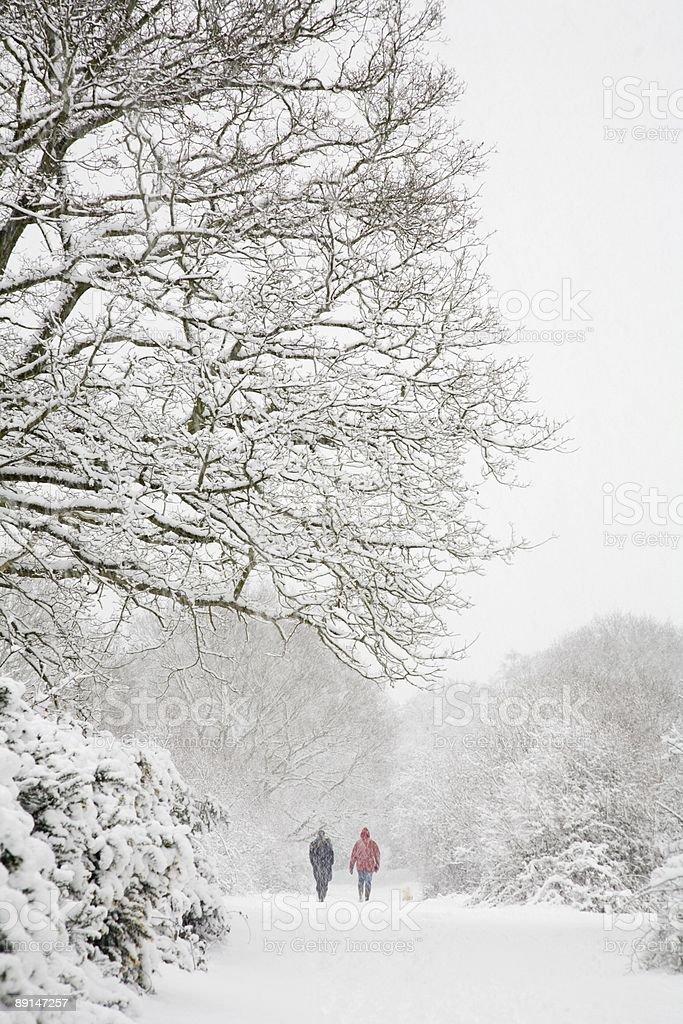 Walking in winter royalty-free stock photo