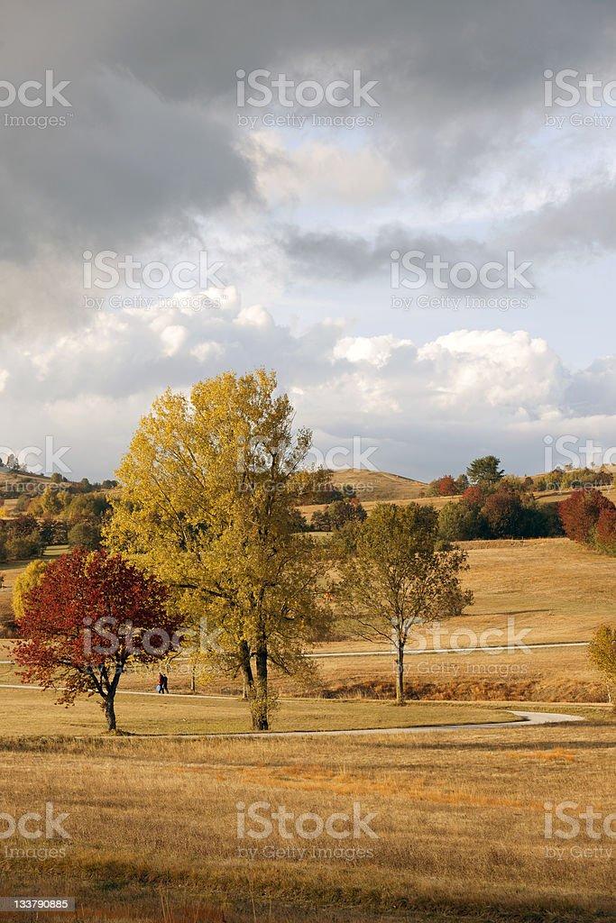 Walking on Beautiful Plateau in Slovenia royalty-free stock photo