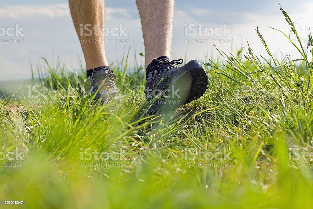 Walking on green grass royalty-free stock photo