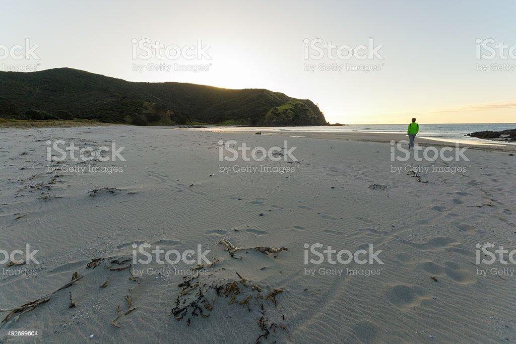 Walking on the beach at sunset stock photo