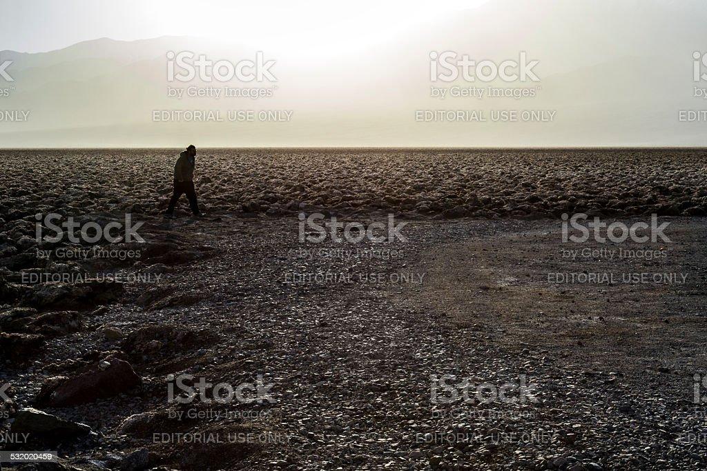 Walking on the desert stock photo