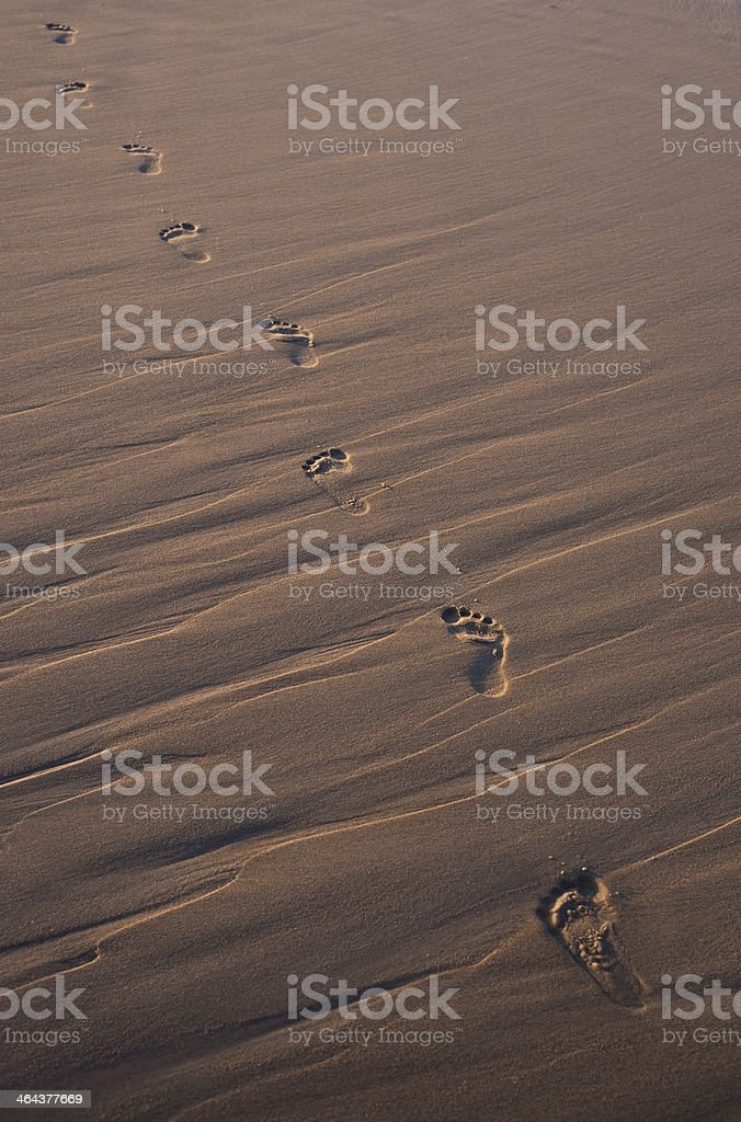walking on the sand at sunset royalty-free stock photo