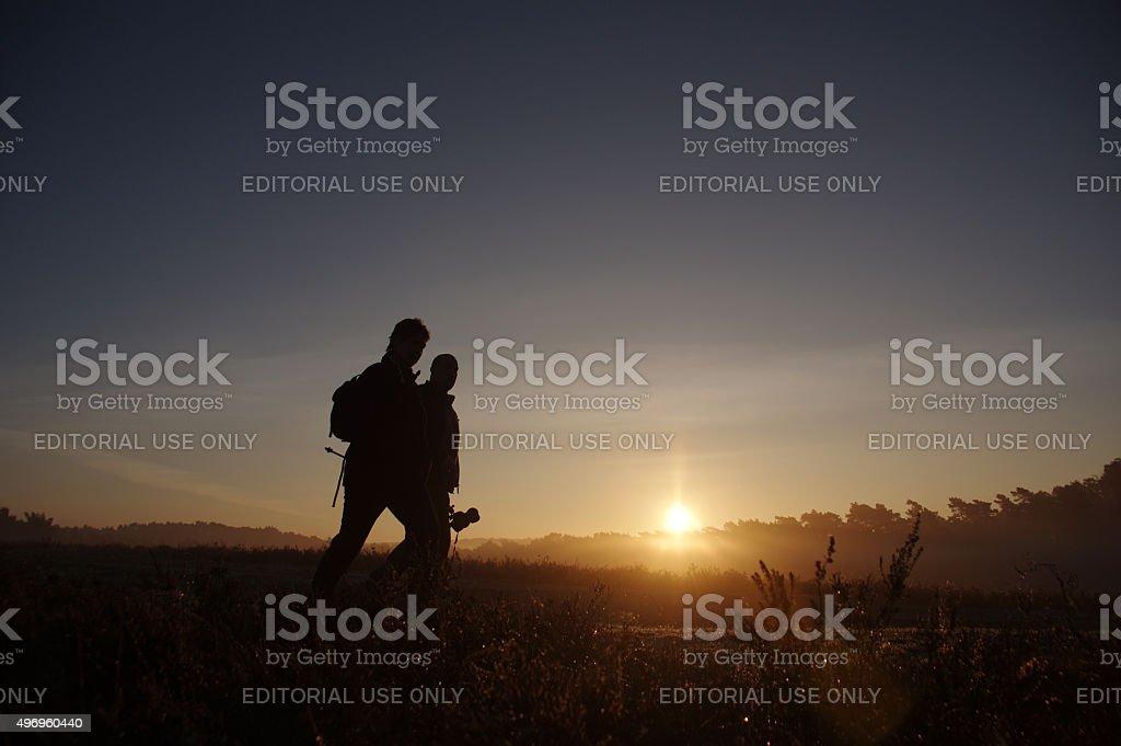 Walking over the heathland stock photo