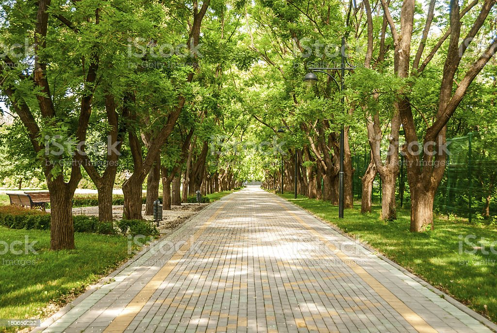 walking path in the park stock photo