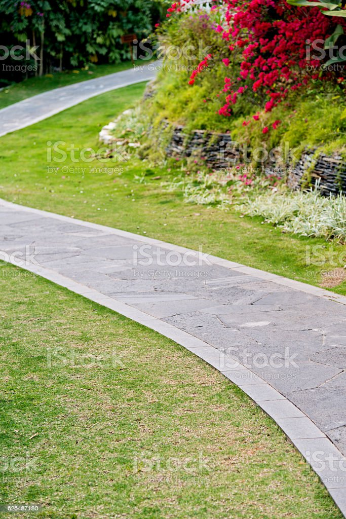 Walking path in the summer park stock photo