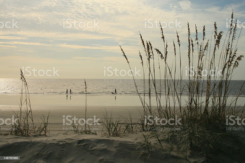 walking the beach royalty-free stock photo