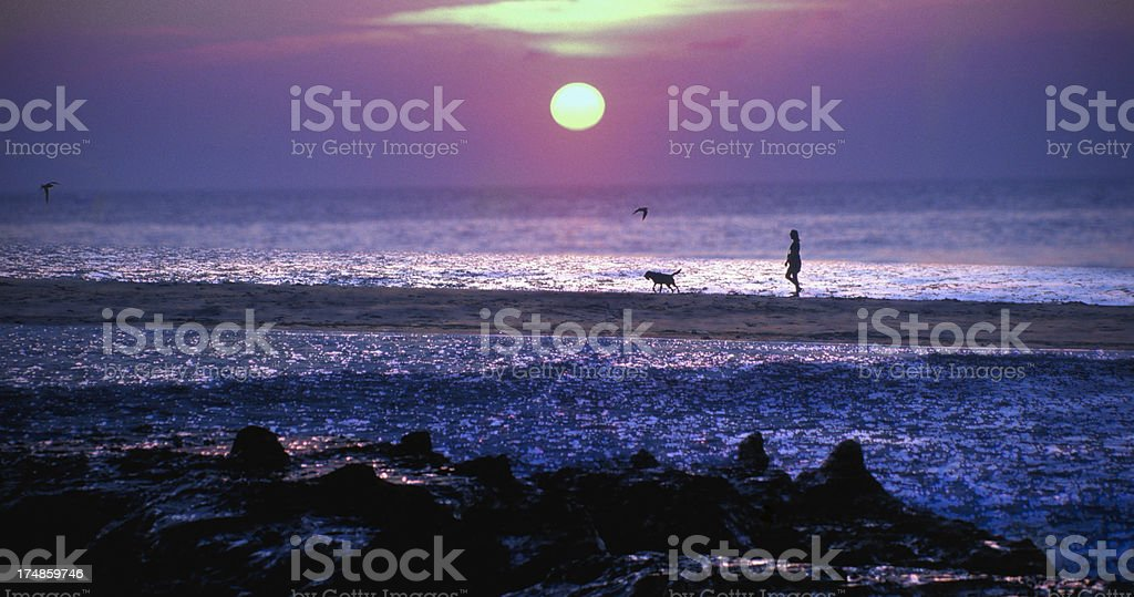 Walking the dog at sunset royalty-free stock photo