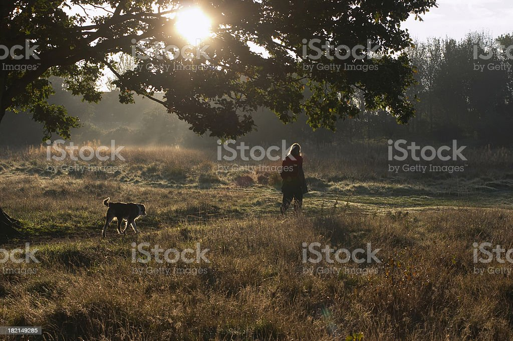 Walking the dog in early morning stock photo