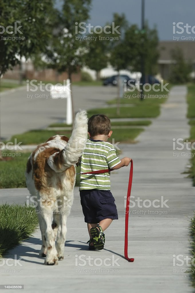 Walking the dog royalty-free stock photo