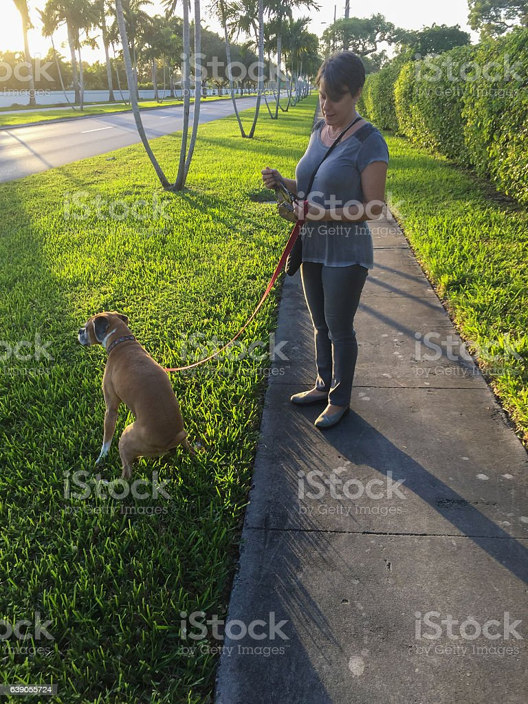 Woman watching dog defecating on the grass outdoors.