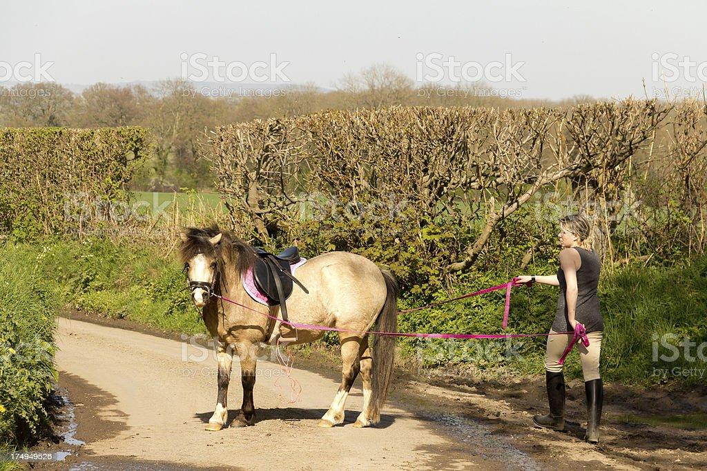 Walking the pony. stock photo