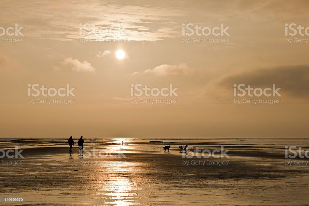 walking the sea royalty-free stock photo