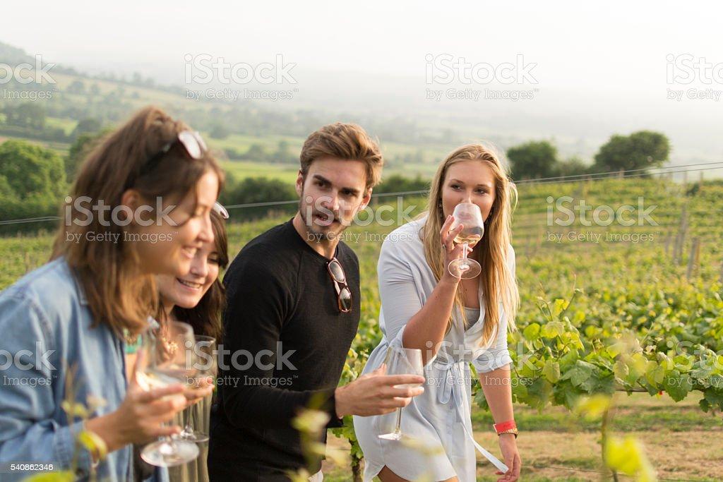 Walking through a vineyard stock photo
