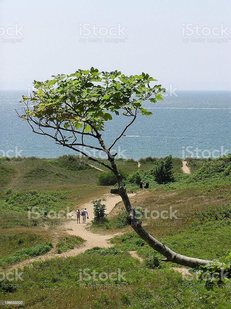 Walking To The Beach stock photo