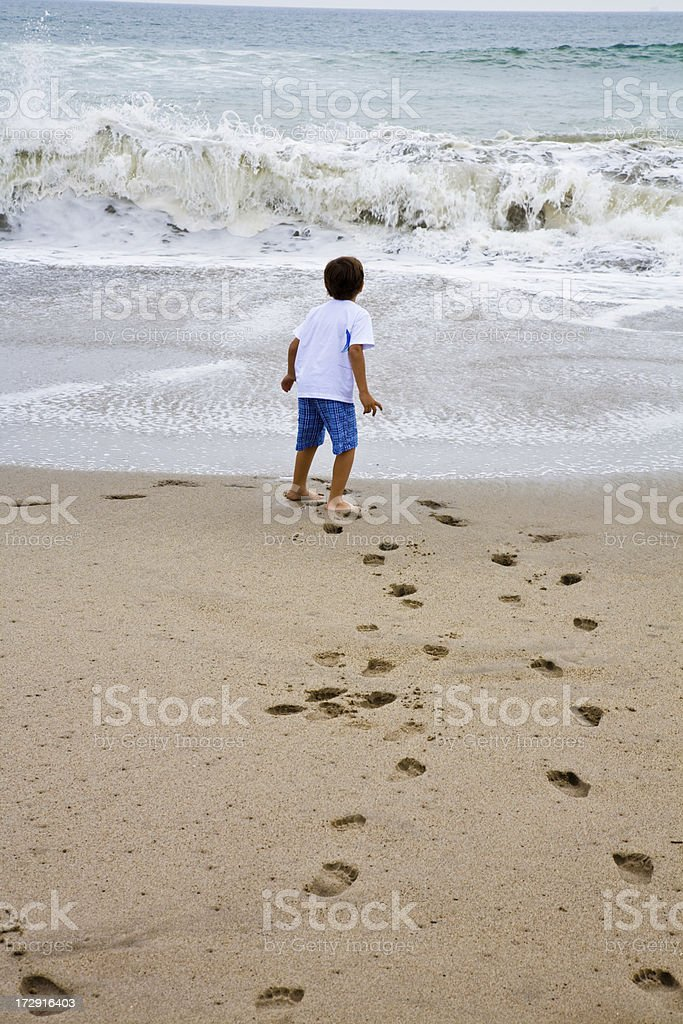 Walking To The Ocean royalty-free stock photo