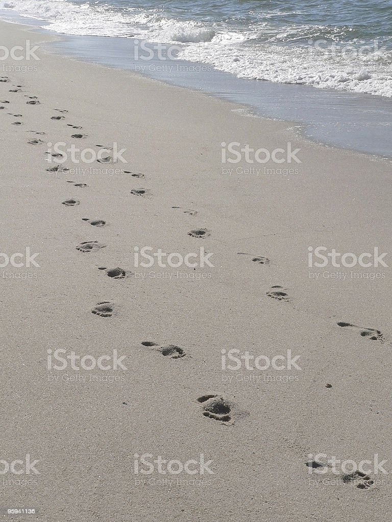 walking together royalty-free stock photo