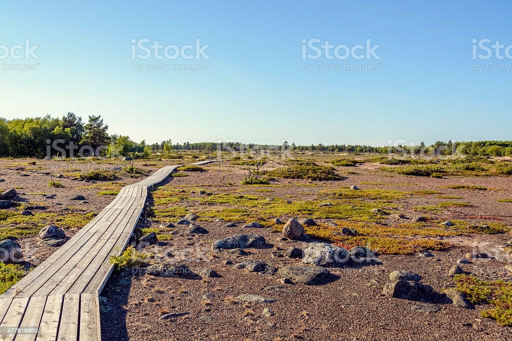 Walking trail on Island stock photo