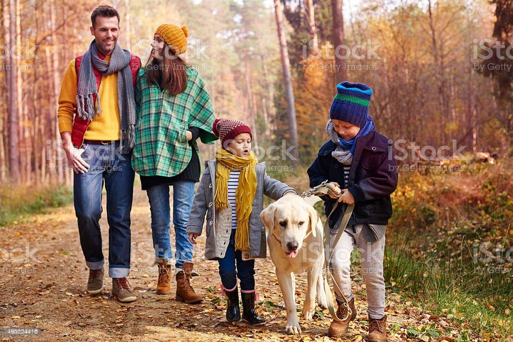 Walking with all family in autumn season stock photo