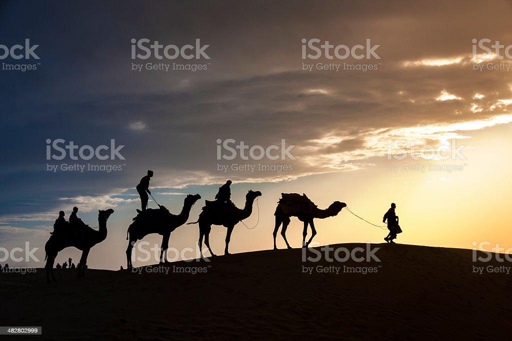 walking with camel through Thar Desert royalty-free stock photo