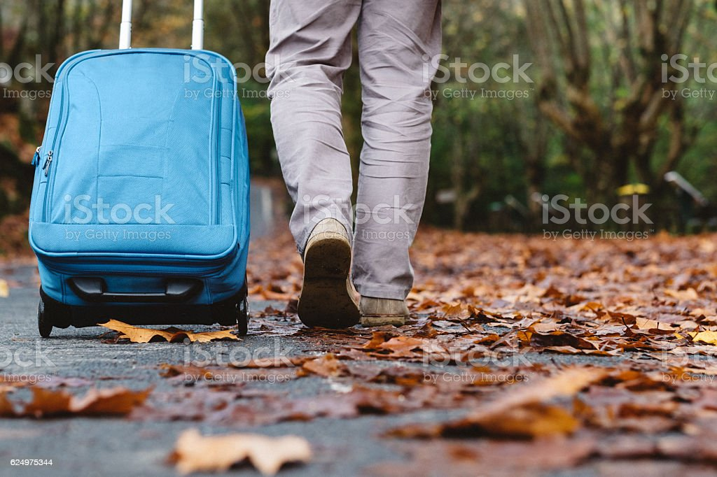 Walking with suitcase by road in autumn. stock photo