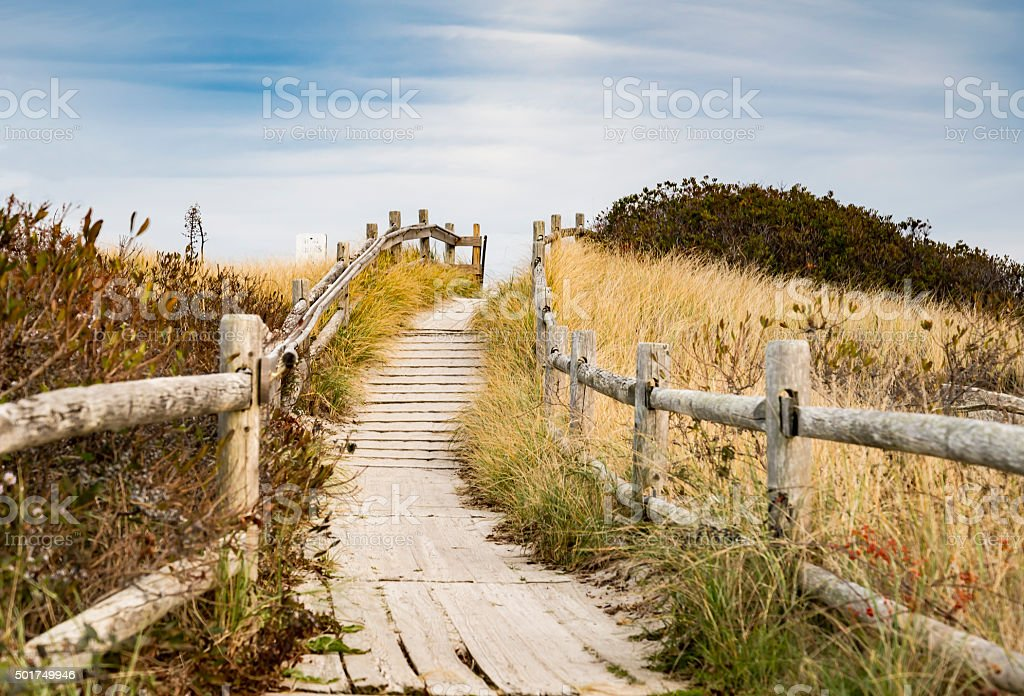 walkpath to the beach stock photo