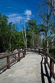 walkway between mangrove at Tua Pek Kong Temple, Sitiawan, Malaysia