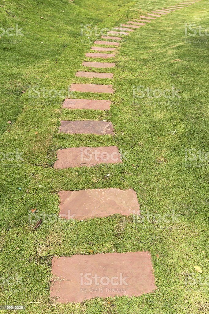 walkway on the green grass stock photo