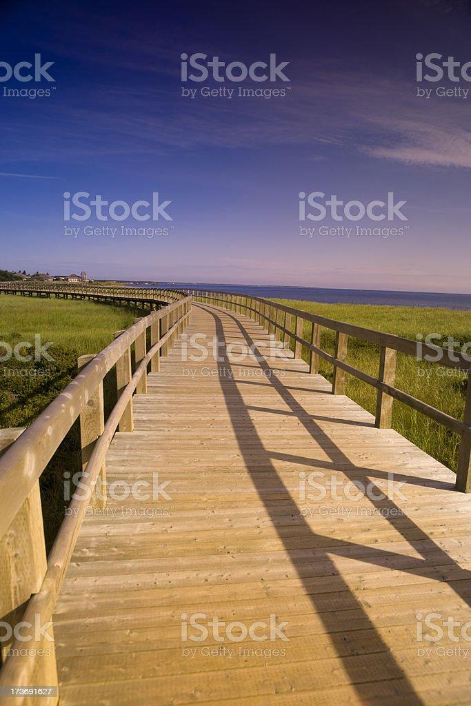 Walkway over the wetlands royalty-free stock photo